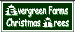 Evergreen Farms Logo